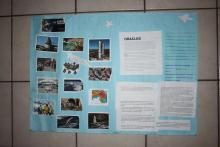 Student poster #8